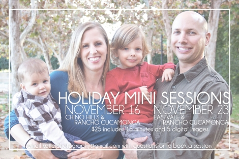HolidayMinis2013